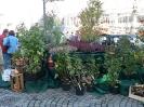 Apfelmarkt 2006_10