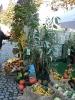 Apfelmarkt 2006_1