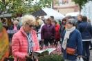 Apfelmarkt 2017 Aschaffenburg_14