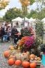 Apfelmarkt 2017 Aschaffenburg_2