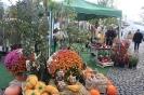 Apfelmarkt 2017 Aschaffenburg_5