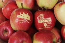 19. Regionaler Apfelmarkt